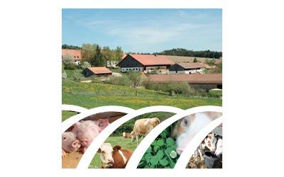 Bildzeichen für Bayerische Staatsgüter, Standort Kringell